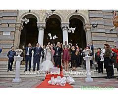 Porumbei albi nunta Constanta