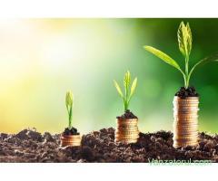 Finanțarea bancară a populațiilor în nevoie